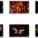 Descarga el espectacular tema Mariposas abstractas para Windows 7