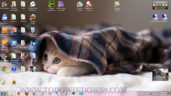gatitos durmientes tema windows7